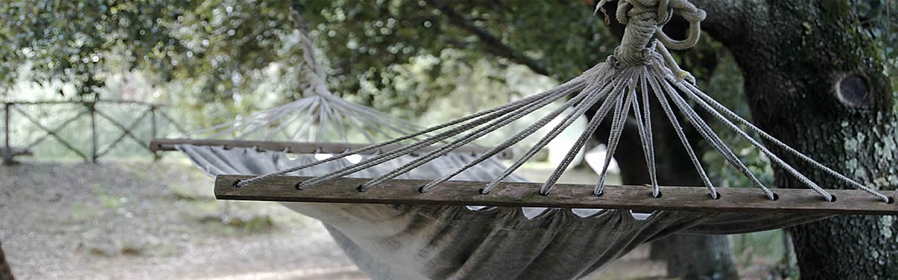 A hammock among the trees...